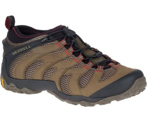 brown hiking shoe